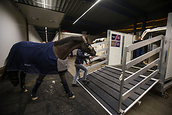 Charlotte Dujardin's, (GBR), Valegro and his longtime groom Alan Davies on their way to the flying stall<br /> Departure of the horses to the World Cup Finals in Las Vegas from Schiphol - Amsterdam 2015.<br />  © Hippo Foto - Dirk Caremans