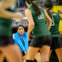 111414  Adron Gardner/Independent<br /> <br /> Navajo Prep Eagle Michelle Lee (6) lines up a server return to the Texico Wolverines during the New Mexico state volleyball finals at the Santa Ana Star Center in Rio Rancho Friday.