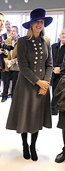LADY GABRIELLA WINDSOR at the 2008 Hennessy Gold Cup held at Newbury racecourse, Berkshire on 29th November 2008.<br /> <br /> NON EXCLUSIVE - WORLD RIGHTS