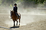 Middletown, New York - A rider and her horse kick up dust as they compete in the 70th annual Middletown Rotary Horse Show in the Rotary Ring at Fancher-Davidge Park on Sept. 8, 2013.