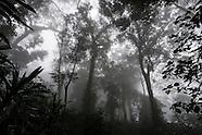 Gorongosa National Park & Mountain