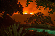 Napa Valley, California: Atlas Wildfire, October 2017. United States: The Atlas Wildfire advances toward the home of Peter Menzel and Faith D'Aluisio in the eastern hills of the Napa Valley, California, on October 10, 2017 at about 4 AM. The fire started nearly 30 hours earlier, and when finally contained a week later, had burned more than 50,000 acres and 700 structures, killing 6 people. After more than two decades of preparing their structures and property for wildfire, the couple declined to evacuate—estimating that the odds of saving their home and studio were better if they stayed. They decreased ladder fuel and watered grounds and structures over 45 hours, and with the help of the U.S. Forest Service and Cal Fire, saved their home and office from burning. The fire charred about 50 acres of their 69-acre property. <br /> A multi-year drought in California followed by a record heavy rainy season resulted in copious vegetation, which dried out during the summer and fall and provided abundant fuel for a perfect storm for a firestorm—high winds and low humidity. <br /> After a career spent photographing extremes and catastrophes around the world, when the disaster threatened their home, Menzel documented the wild land fire while chain-sawing limbs from trees and setting hose, as he worked with his wife and first responders to save their property. <br /> Statistic sources: <br /> California Droughts Compared | USGS California Water Science Center <br /> <br /> http://beta.latimes.com/local/lanow/la-me-california-fires-20171014-story.html<br /> <br /> www.fire.ca.gov/current_incidents/incidentdetails/Index/1866