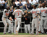 CHICAGO - MAY 01:  Brian Roberts #1 is greeted by Felix Pie #18 and Robert Andino #11 of the Baltimore Orioles after scoring on Nick Markakis's double in the fifth inning during the game against the Chicago White Sox on May 01, 2011 at U.S. Cellular Field in Chicago, Illinois.  The Orioles defeated the White Sox 6-4.  (Photo by Ron Vesely)  Subject:   Nick Markakis;Brian Roberts;Felix Pie;Robert Andino