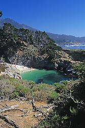 People On Beach On California Coast