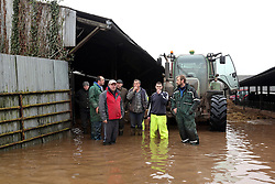 © Licensed to London News Pictures. Moorland. Somerset. 06/02/14. West Yeo farm - The evacuation of 550 beef cattle all in a day. Rebecca Horsington put out an appeal on Facebook for help today - about 30 farmers arrived with trailers to take cattle to a nearby cattle market in Bridgwater out of danger. from floodwater which was rising rapidly.. Photo credit : Jason Bryant/LNP