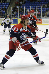 11 November 2006: Tommy Kotsopoulos.&#xD;The Elmira Jackals met the Bloomington PrairieThunder at the U.S. Cellular Coliseum in Bloomington Illinois.<br />