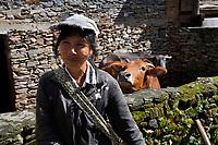 Farmer in Stone village and cows Jingdong, Wuliangshan Nature Reserve, Mount Wuliang Nature Reserve in Jingdong county, Yunnan, China.