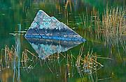 Rock reflection, Near Dorset, Ontario, Canada