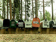 Row of mail boxes with one for Whiteman