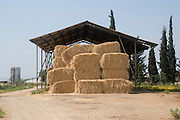 Israel, Upper Galilee, Kibbutz Amiad, Bales of Straw in a shed