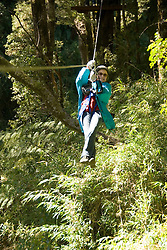 Chile, Lake Country: Canopying or ziplining adventure sport through the canopy of the trees on a steel line near Peulla..Photo #: ch618-33310..Photo copyright Lee Foster www.fostertravel.com, lee@fostertravel.com, 510-549-2202.