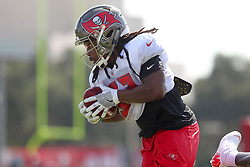 July 28, 2018 - Tampa, FL, U.S. - TAMPA, FL - JULY 28: Jacquizz Rodgers (32) carries the ball during the Tampa Bay Buccaneers Training Camp on July 28, 2018 at One Buccaneer Place in Tampa, Florida. (Photo by Cliff Welch/Icon Sportswire) (Credit Image: © Cliff Welch/Icon SMI via ZUMA Press)