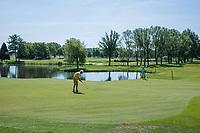 BRIELLE -  hole 16 met wilde bloemen,, Kleiburg , golfbaan.  COPYRIGHT KOEN SUYK