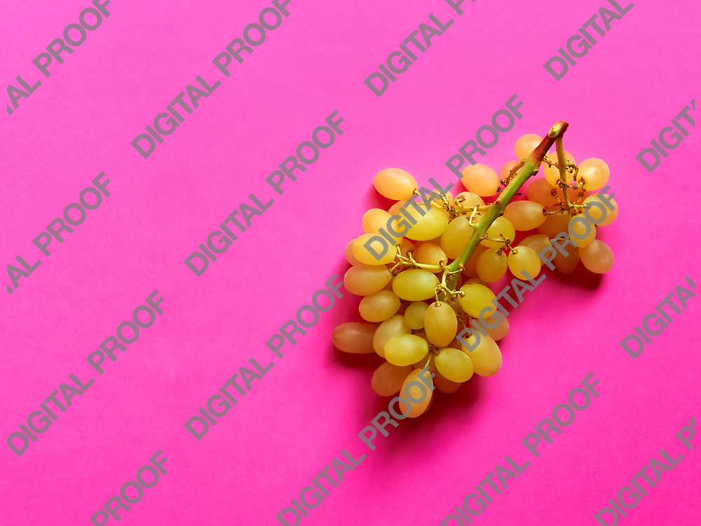 Above view of isolated set of a bunch of sweet seedless grapes in studio with pink background