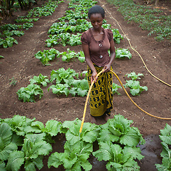 Food and agriculture, Tanzania