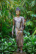 Lyon Arboretum. Manoa Valley, Honolulu, Oahu, Hawaii