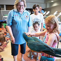Sasha Elliott, 5, pets Lucille, a blue throated macaw while Carolyn Newell, left, of Exotics of the Rainforest watches during an educational presentation by Exotics of the Rainforest at the Octavia Fellin Public Library Children's Branch Wednesday, June 5 in Gallup. Newell founded Exotics of the Rainforest in 1992.