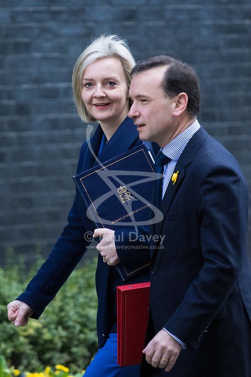 Downing Street, London, February 28th 2017. Justice Secretary and Lord Chancellor Liz Truss and Welsh Secretary Alun Cairns attends the weekly cabinet meeting at 10 Downing Street in London.