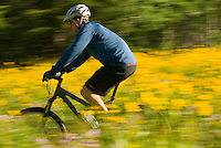 A young man rides his mountain bike in the Cache Creek area near Jackson, Wyoming.