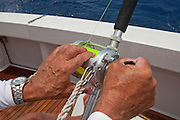 Anglers hands applying additional drag while winding silver big game reel.