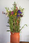 Beautiful bouquet of wild flowers. Zawady Central Poland