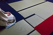 La cérémonie du thé , chanoyu  - 茶の湯 (« eau chaude pour le thé ») est influencé par le bouddhisme zen. Le silence doit régner et les gestes sont précis. Le maître de cérémonie prépare le thé face aux invités. Ces gestes sont lents et méticuleux. Le macha, thé traditionnel est une poudre verte qui se mélange à l'eau avec énergie avec un outil en bambou en forme de fouet.