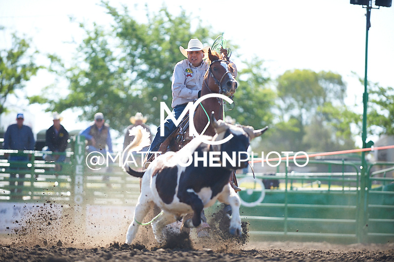 Team roper Clint Harry of Nixon, NV competes at the Livermore Rodeo in Livermore, CA<br /> <br /> <br /> UNEDITED LOW-RES PREVIEW<br /> <br /> <br /> File shown may be an unedited low resolution version used as a proof only. All prints are 100% guaranteed for quality. Sizes 8x10+ come with a version for personal social media. I am currently not selling downloads for commercial/brand use.