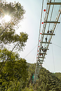 Low angle shot of tourists walking along a glass elevated walkway above Mukeng Bamboo Forest, Huangshan City, Anhui Province, China