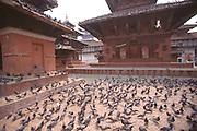 Bhaktapur Dubar Square