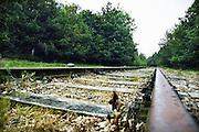 Nederland, Herkenbosch, 10-6-2010 Meinweg, IJzeren Rijn, Iron Rhine.De spoorlijn de IJzeren Rijn verbindt Antwerpen via Weert en Roermond met het Ruhrgebied. De spoorweg doorkruist o.a. het natuurgebied Nationaal Park de Meinweg. Het trajekt is sinds 1990 niet meer in gebruik.Foto: Flip Franssen/Hollandse Hoogte