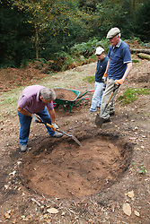 Volunteers at Bestwood Country Park, Nottingham, part of Sherwood Forest, working on conservation project; they are digging out heather scrapes where the topsoil is removed and heather planted in order to produce heathland, a different habitat typical of the original forest. Removing the topsoil enables the heather to compete better against other plants species.