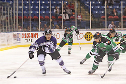15 November 2013: Travis Granbois & Bret Peppler. Louisiana IceGators at Bloomington Thunder Southern Professional Hockey League (SPHL) at the U.S. Cellular Coliseum in Bloomington Illinois
