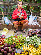 11 MARCH 2013 - LUANG PRABANG, LAOS:  A women sells fruit and produce in the market in Luang Prabang, Laos.    PHOTO BY JACK KURTZ