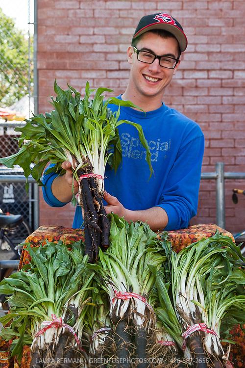 A farmer holds a bunch of Black salsify or Scorzonera at a farmers market. (Scorzonera hispanica)