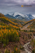 Pinchot Creek in autumn in Glacier National Park, Montana, USA