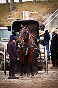 Amish boy holds a horse buggy during the Annual Mud Sale to support the Fire Department  in Gordonville, PA.