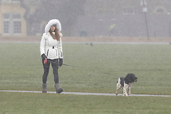 © Licensed to London News Pictures. 07/02/2021. London, UK. A woman walks her dog during a snow shower on Blackheath Common. Snow is expected for large parts of the UK and a yellow weather warning is in place in parts of England as Storm Darcy hits the UK. Photo credit: George Cracknell Wright/LNP