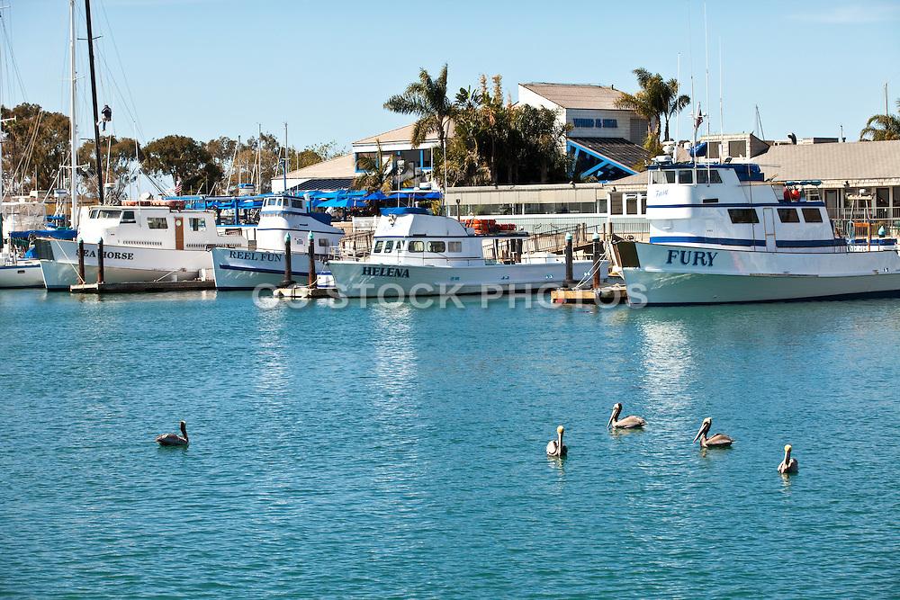 Fishing Boats Docked In Dana Point Harbor