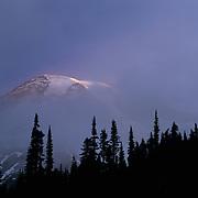 Huge Mt. Rainier peeks out momentarily through dense morniong fog in Mt. Rainier National Park, WA.