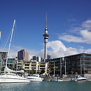 Moored yachts in Viaduct Basin. showing Sky Tower, Auckland, New Zealand, .Located in the heart of Auckland City, Viaduct Basin and Harbour is a first class residential, commercial and entertainment precinct..The marina caters to commercial vessels, pleasure craft and super yachts with 150 marina berths ranging in size up to 60 metres..Viaduct Basin hosts many fabulous events including the past America's Cup defences, Louis Vuitton Regattas, the Volvo Round the World Race stopover, Auckland International Boatshow and New Zealand Fashion Week..Visitors can explore New Zealand's rich maritime history at Voyager Maritime Museum, cruise the harbour on a charter yacht, view the yachts berthed in the harbour and enjoy the world class hospitality at the many bars and restaurants that line the waters edge..New Zealand's largest marine service precinct, Westhaven, lies a short walk to the west.. Auckland, New Zealand. 3rd November  2010. Photo Tim Clayton..