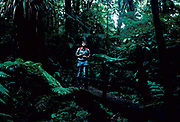 Monteverde Cloud Forest, Birdwatching, Costa Rica, rainforest, jungle, man, central america, tourist