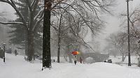 Central Park at Gapstow Bridge during a snow storm