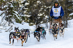 Wyoming Dog Sled Racing. A musher and a bunch of happy huskies competing in the Pedigree Stage Stop Sled Dog Race in Alpine Wyoming