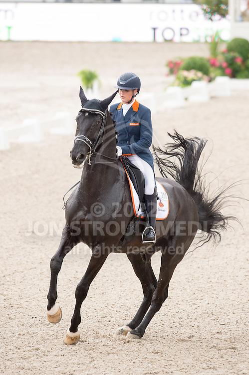 Danielle Heijkoop (NED) & Siro - Dressage Grand Prix - CDIO5 - CHIO Rotterdam 2016 - Kralingse Bos, Rotterdam, Netherlands - 23 June 2016