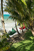 Idyllic landscape with view of hammocks on a beach and palm trees, Little Corn Island, Nicaragua