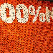 NLD/Uitgeest/20170207 - Uitreiking 100% NL Awards 2016 100% Nl logo gemaakt van bloemen
