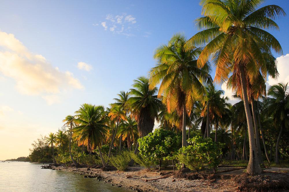 Rangiroa, Archipiélago Tuamotu, Polinesia Francesa