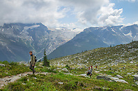 Hikers on Abbott Ridge Trail, Illecillewaet Glacier is in the distance. Selkirk Mountains Glacier National Park British Columbia