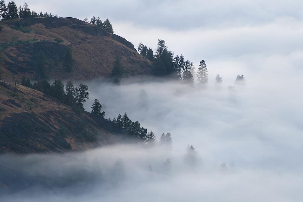 Columbia Highlands, Washington.
