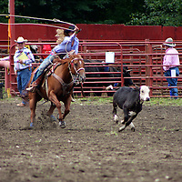 The Rodeo girls Calf roping at the 2009 Roy Rodeo as other riders look on